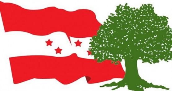 कांग्रेस सिन्धुपाल्चोकसहित ८ जिल्लाको क्रियाशील सदस्यता विवाद टुंगियो